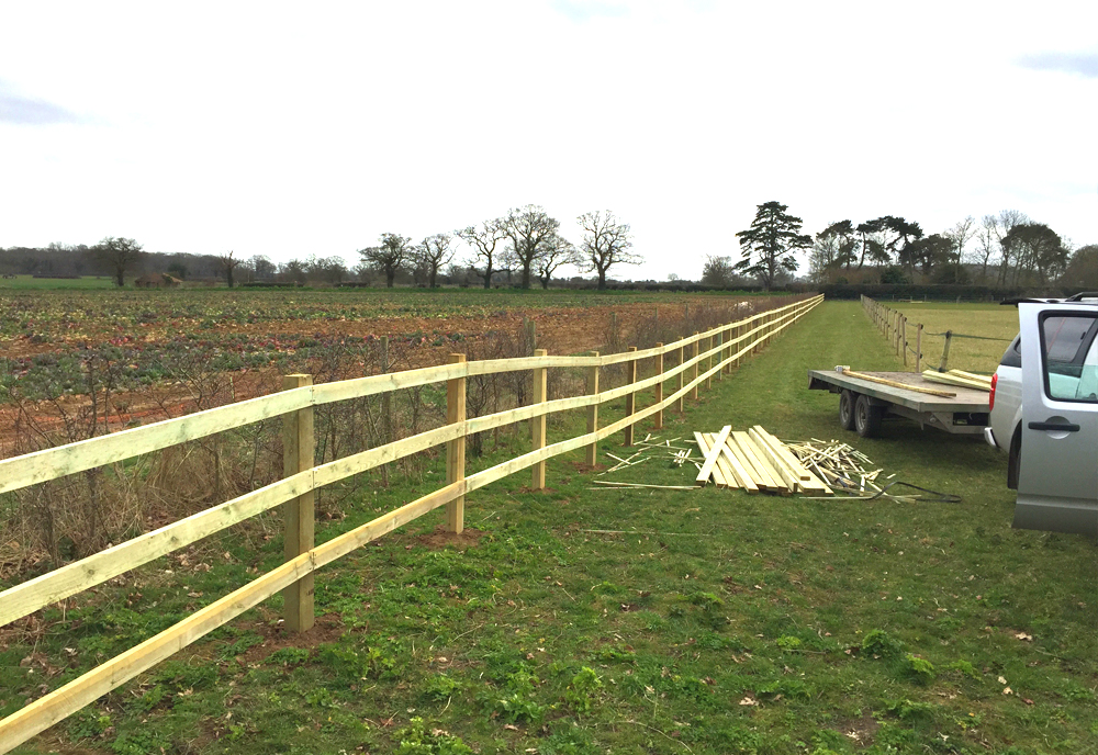 Farm Fencing In Hockley Leigh On Sea Rayleigh Southend